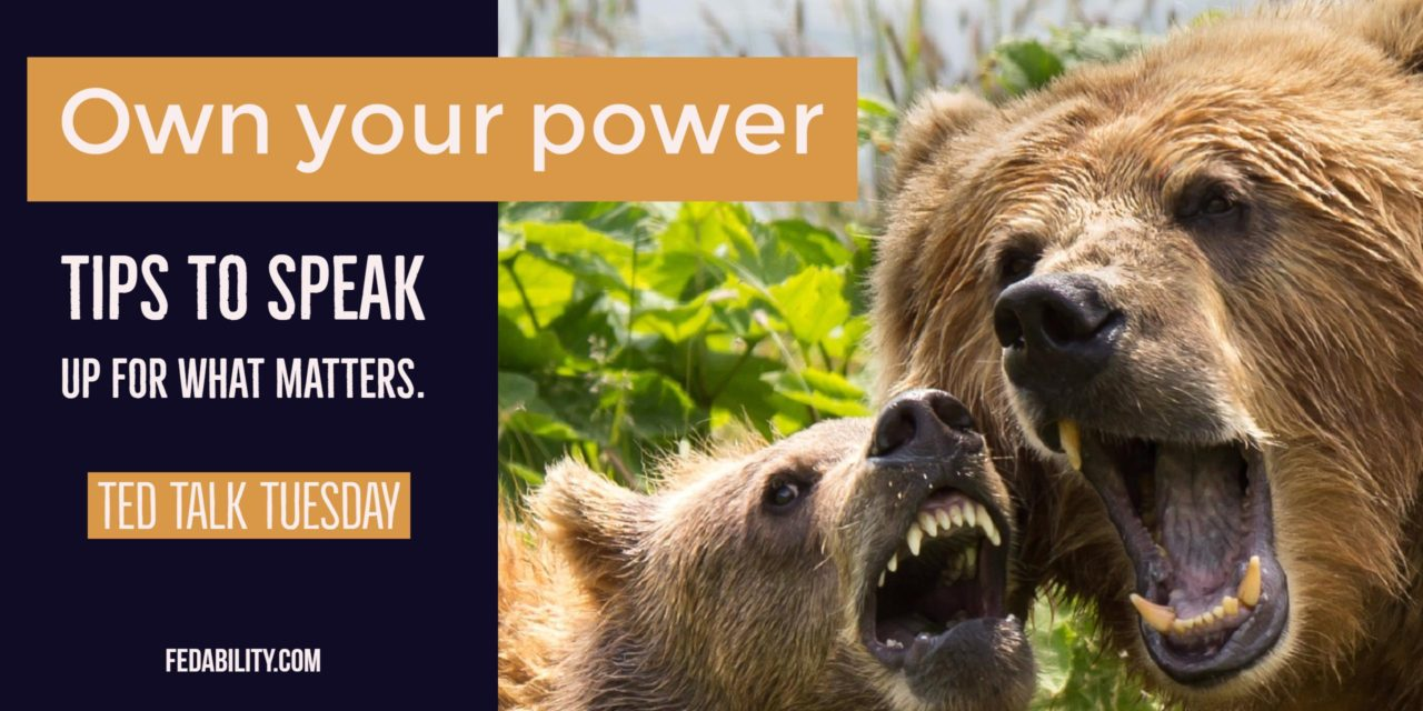 Own your power. Be a ferocious mama bear. Tips to speak up for what matters.